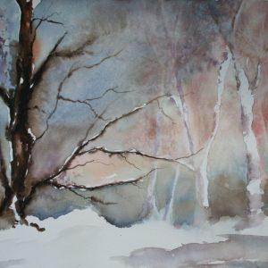 La forêt après la neige
