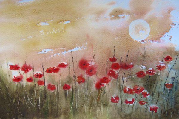 champs avec des fleurs rouges